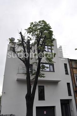 Balustrade exterioare - Balustrade casa particulara Bucuresti SUDOMETAL - Poza 2