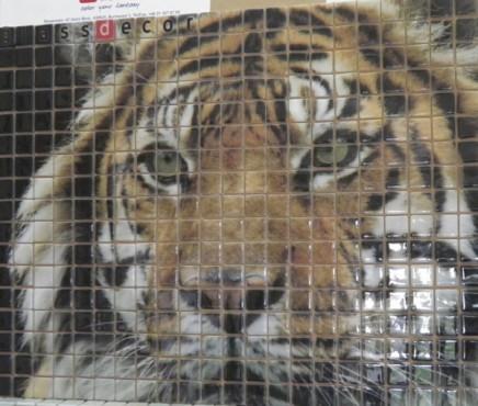 Mozaic din sticla - sticla imprimata Top mosaic - Poza 3