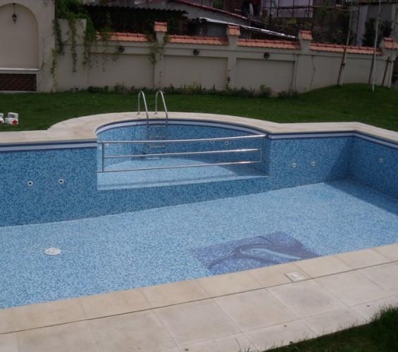 Mozaic piscina 1 Top mosaic - Poza 10