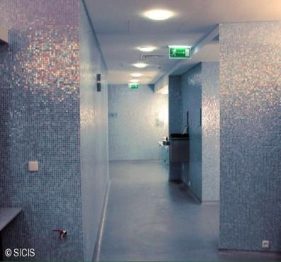 Polonia - Wellness Hotel Hilton -Varsavia SICIS - Poza 3
