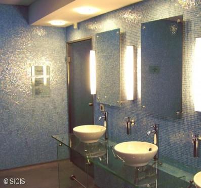 Polonia - Wellness Hotel Hilton -Varsavia SICIS - Poza 4