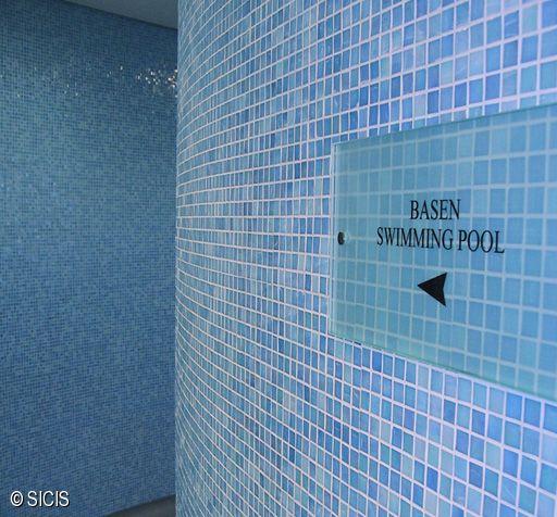 Polonia - Wellness Hotel Hilton -Varsavia SICIS - Poza 8