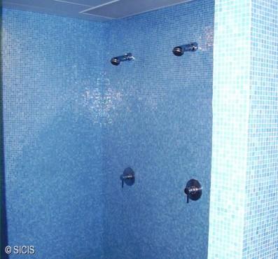 Polonia - Wellness Hotel Hilton -Varsavia SICIS - Poza 9
