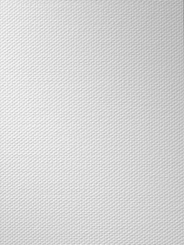 Tapet fibra de sticla - CP_109 VITRULAN - Poza 1