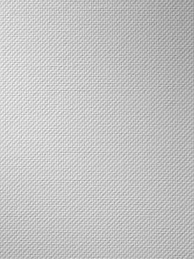 Prezentare produs Tapet fibra de sticla - CP_117 VITRULAN - Poza 3
