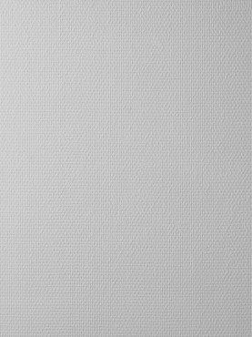 Prezentare produs Tapet fibra de sticla - CP_131 VITRULAN - Poza 4