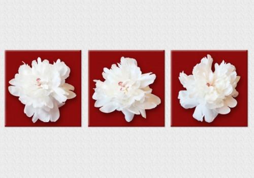 Tablouri set dual view flori - bujori albi Home sweet - Poza 1