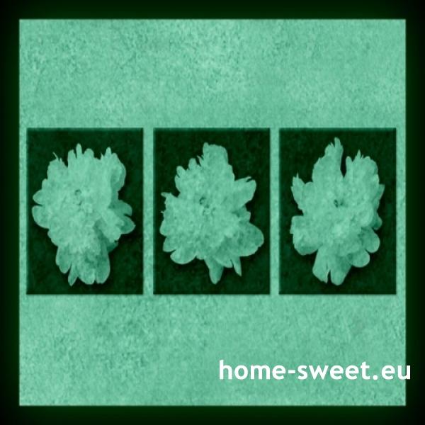 Tablouri set dual view flori - bujori albi Home sweet - Poza 2
