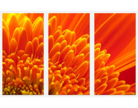 Tablouri set dual view flori - crizantema portocalie  Home sweet - Poza 1