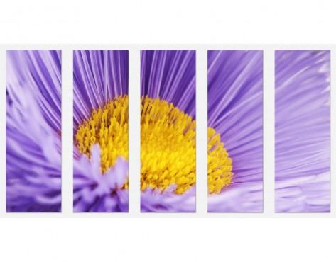 Tablouri set dual view - floare in detaliu Home sweet - Poza 1