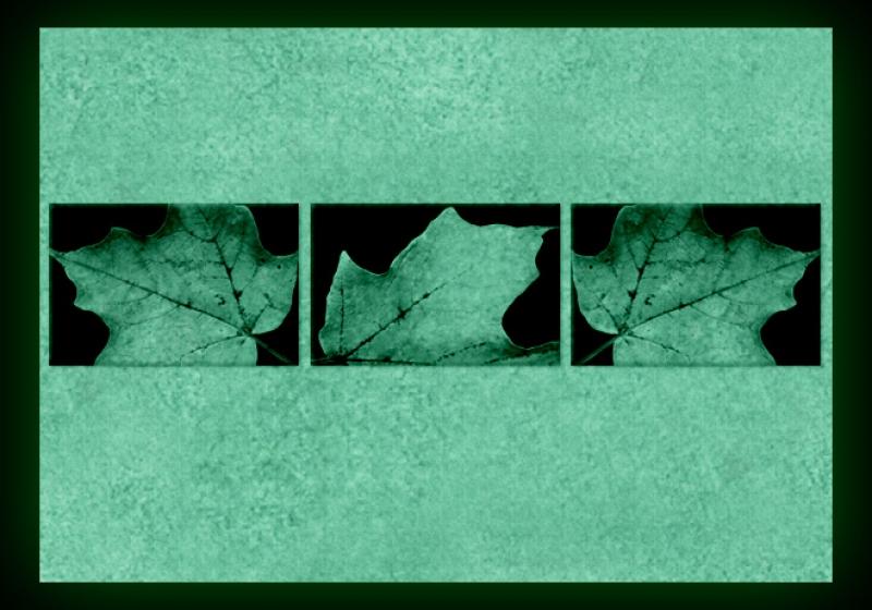 Tablouri set dual view - frunze de toamna Home sweet - Poza 2