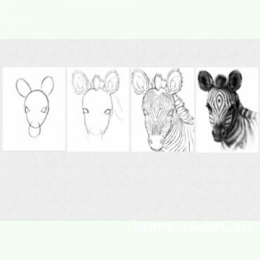 Tablouri set dual view pentru copii lectia de pictura in 4 pasi - Zebra Home sweet - Poza 1