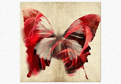 Tablouri dual view - fluture rosu Home sweet - Poza 1