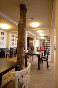 Lucrari, proiecte Amenajare restaurant Daimon - Bucuresti SENSIO - Poza 4