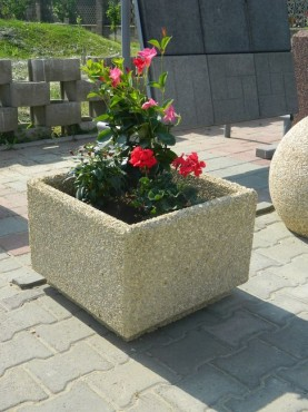 Lucrari de referinta Ghiveci flori crem  - Poza 2
