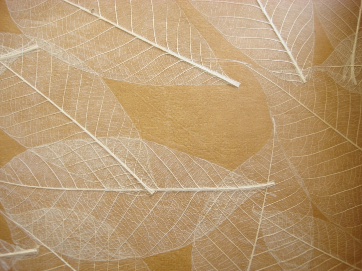 Tapet din frunze naturale  RODEKA - Poza 1