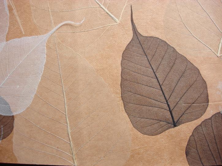 Tapet din frunze naturale  RODEKA - Poza 4