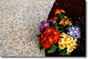 Lucrari, proiecte Pavaj turnat din piatra naturala IDEAL WORK - Poza 11