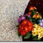 Pavaj turnat din piatra naturala IDEAL WORK - Poza 11