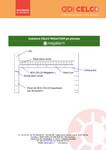 Instalare CELCO MEGATERM pe planseu / BCA - beton celular autoclavizat  / CELCO
