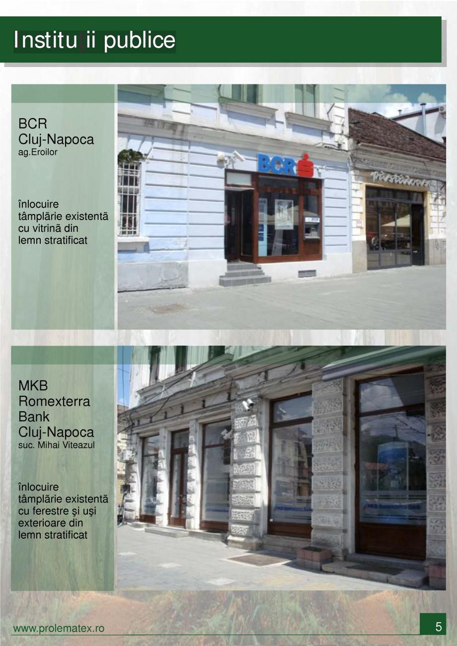 Pagina 6 - Usi de interior din lemn stratificat  PROLEMATEX Lucrari, proiecte Romana
