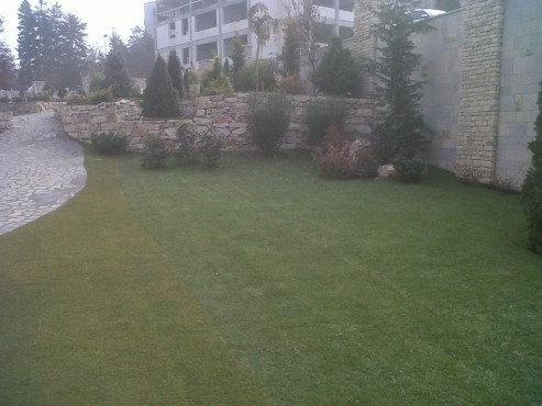 Lucrari, proiecte Amenajari gradini cu piatra naturala de Vistea LEVENTE COMPANIE - Poza 34