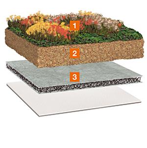 Prezentare produs Acoperis cu vegetatie extensiva BAUDER - Poza 8
