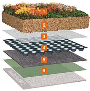 Prezentare produs Acoperis cu vegetatie extensiva BAUDER - Poza 9