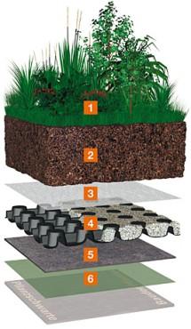 Prezentare produs Acoperis cu vegetatie intensiva BAUDER - Poza 11