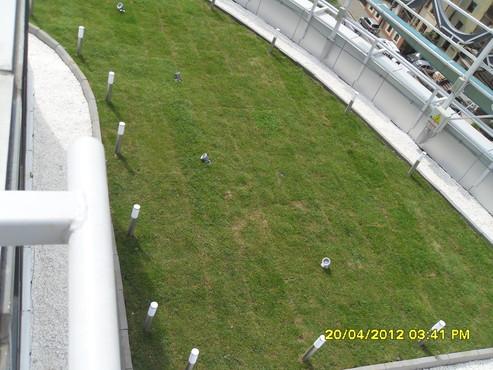 Prezentare produs Acoperisuri cu vegetatie extensiva, intensiva BAUDER - Poza 29