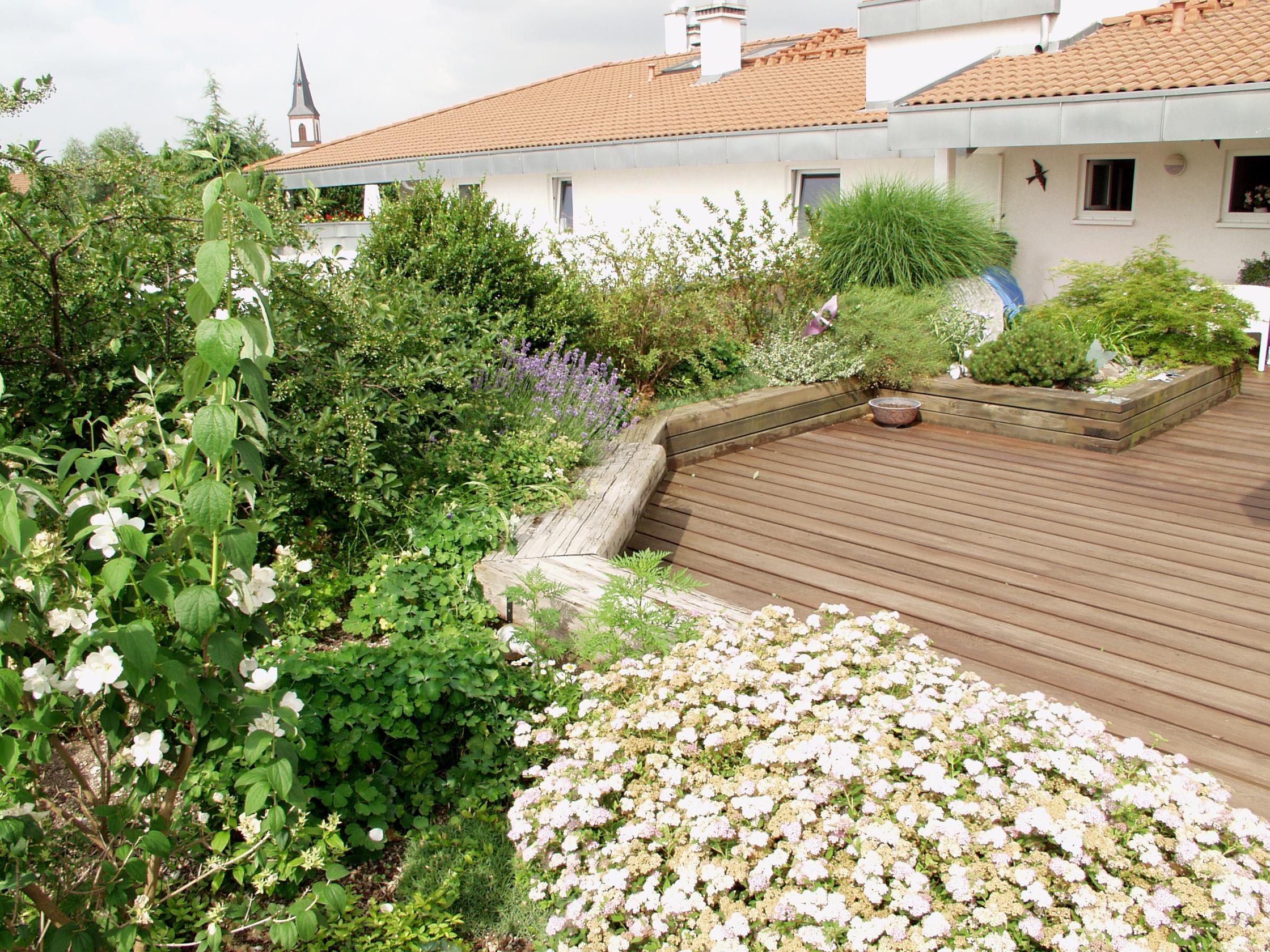 Acoperisuri cu vegetatie extensiva, intensiva BAUDER - Poza 39