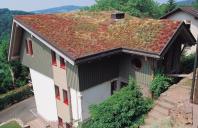 Acoperis cu vegetatie extensiva, intensiva Acoperisul verde BAUDER ofera o serie de avantaje