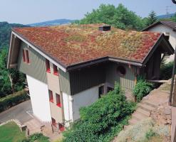 Acoperis cu vegetatie extensiva, intensiva Acoperisul verde BAUDER ofera o serie de avantaje ecologice cum ar fi racirea aerului sau producerea oxigenului, reglarea umiditatii, aduna praful si retine apa pluviala.
