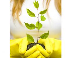 Managementul deseurilor Programul de management al deseurilor ISS este dedicat imbunatatirii calitatii mediului inconjurator si reducerii impactului negativ asupra naturii.