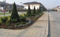 Amenajari gradini, spatii verzi  Amenajarea propriu-zisa a spatiului verde presupune: realizarea proiectului peisagistic; decopertarea a pamantului impropriu si adaugarea de sol fertil; executarea drenajelor si a sistemului de irigatie automatizat; plantarea arborilor si arbustilor; prelucrarea si nivelarea solului in vederea gazonarii; instalarea gazonului care poate fi prin montare  rulourilor de gazon sau prin tehnologia de hidroinsamantare.