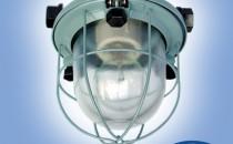 Corpuri de iluminat industriale Gama de corpuri de iluminat industriale oferite de ELBA este compusa din: Corpuri de iluminat cu protectie la umezeala si praf, Balize luminoase si Proiectoare pentru spatii largi