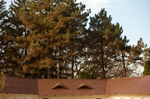 Proiect renovare acoperis, Baneasa, Casa alba ACOPERO - Poza 4