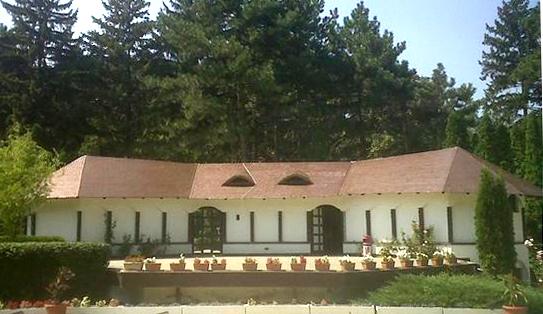 Proiect renovare acoperis, Baneasa, Casa alba ACOPERO - Poza 6