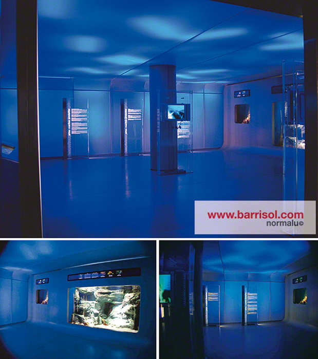 Proiectii si efecte de lumina BARRISOL - Poza 7