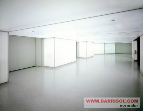 Lucrari de referinta Proiecte realizate cu Barrisol Wall BARRISOL - Poza 24
