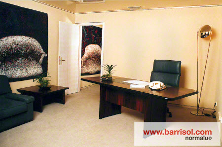 Proiecte realizate cu Barrisol Wall BARRISOL - Poza 1