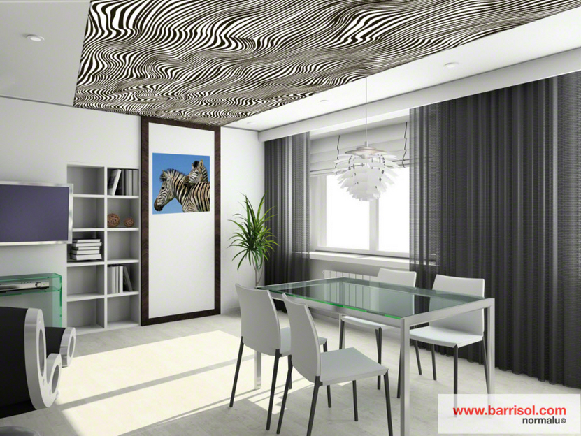 Proiecte realizate cu Barrisol Creadesign BARRISOL - Poza 6