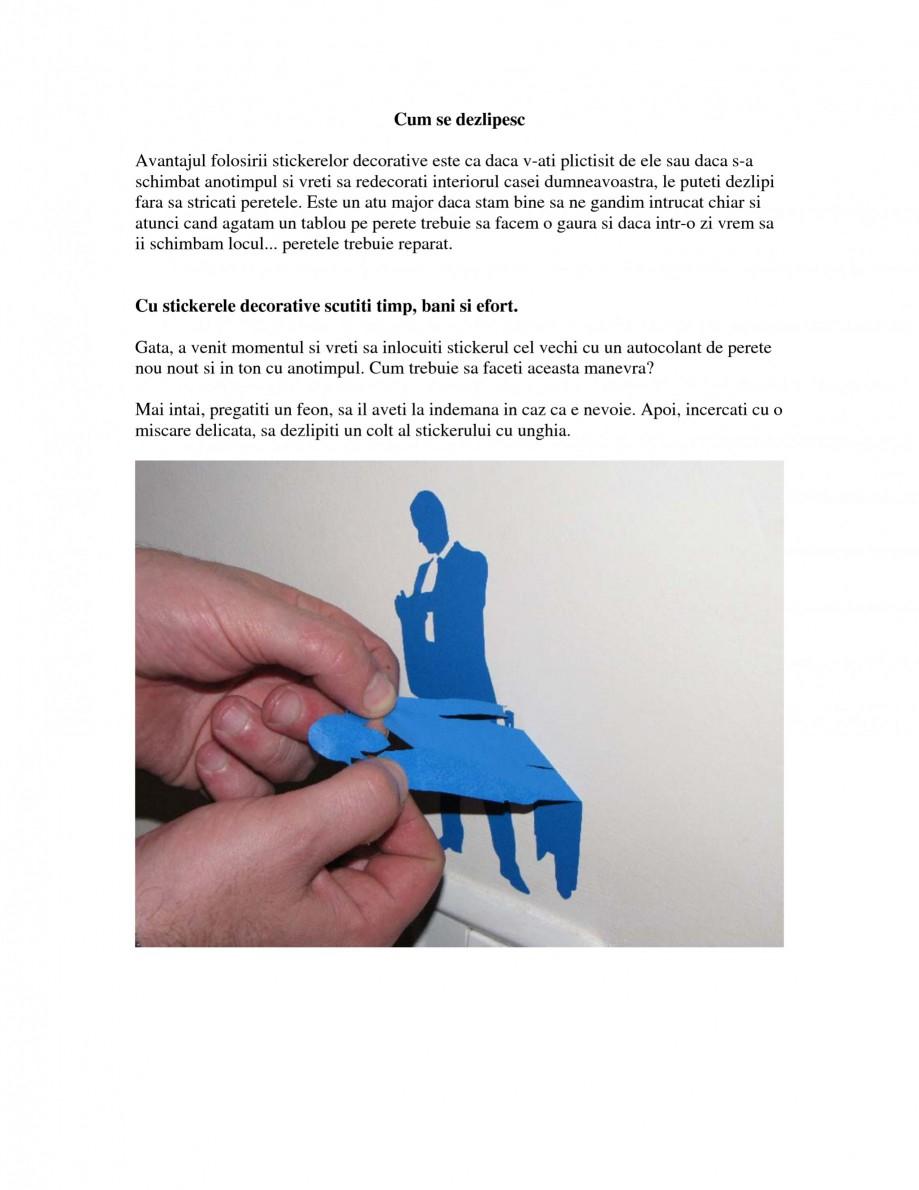 Pagina 1 - Cum se dezlipesc stickerele decorative Beestick Catalog, brosura Romana Cum se dezlipesc ...