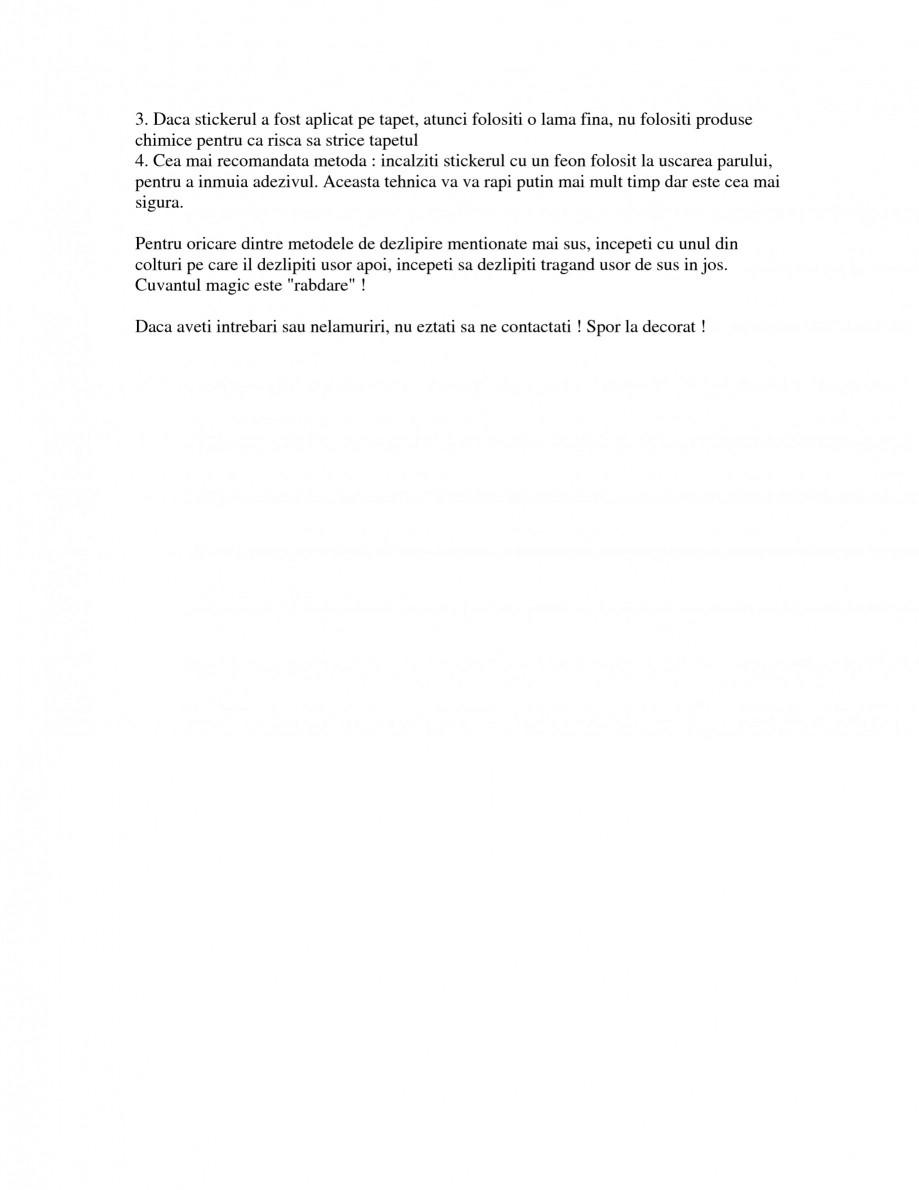 Pagina 4 - Cum se dezlipesc stickerele decorative Beestick Catalog, brosura Romana