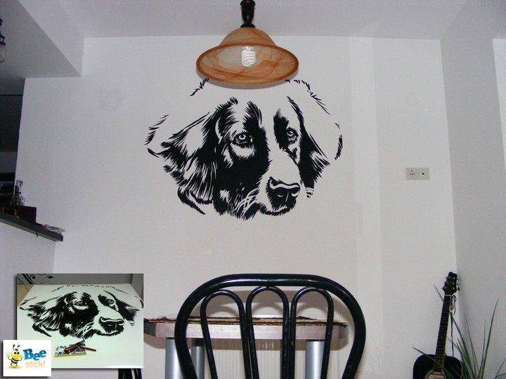 Stickere, folii decorative - poze primite de la clienti Beestick - Poza 172