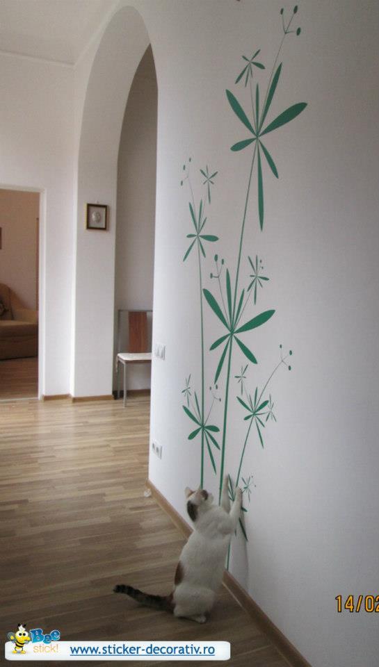Stickere, folii decorative - poze primite de la clienti Beestick - Poza 184