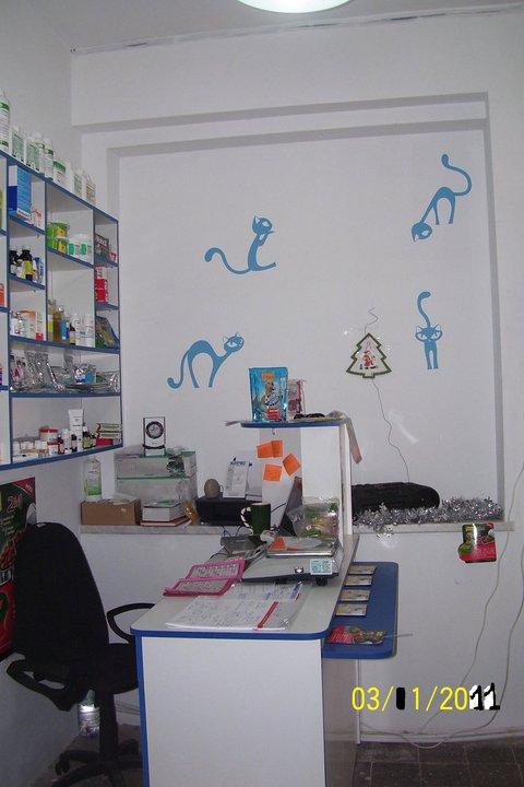 Stickere, folii decorative - poze primite de la clienti Beestick - Poza 195