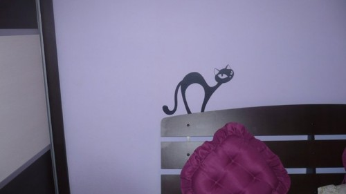 Lucrari, proiecte Stickere, folii decorative - poze primite de la clienti Beestick - Poza 229