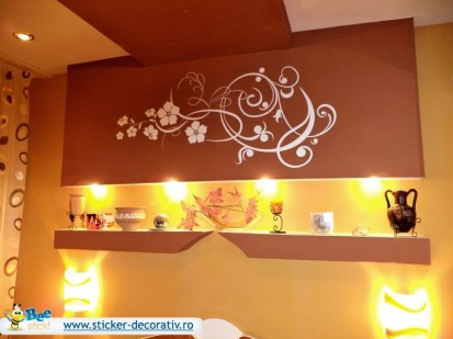 Stickere, folii decorative - poze primite de la clienti / 305213_573471886004327_1201447370_n