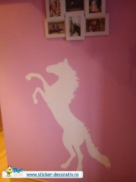 Lucrari, proiecte Stickere, folii decorative - poze primite de la clienti Beestick - Poza 317